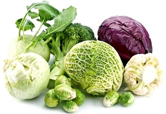Разновидности сорта капусты