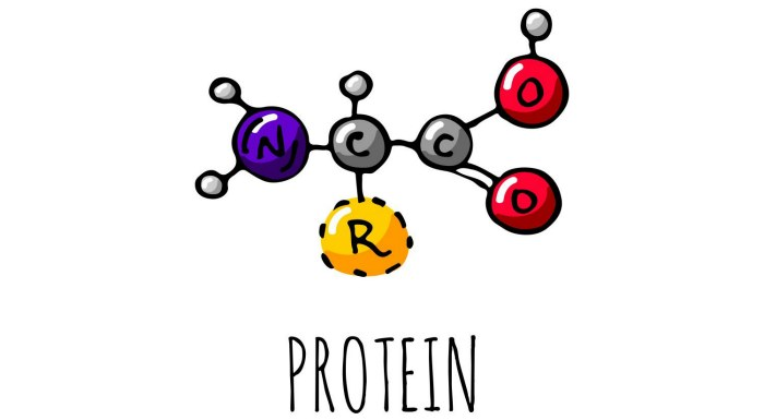 Малекулярная структура протеина