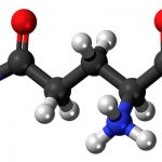 Что такое аминокислоты