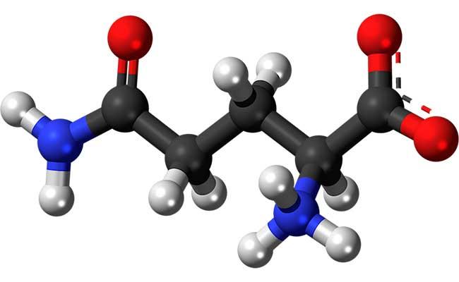 Аминокислоты в спортивном питании