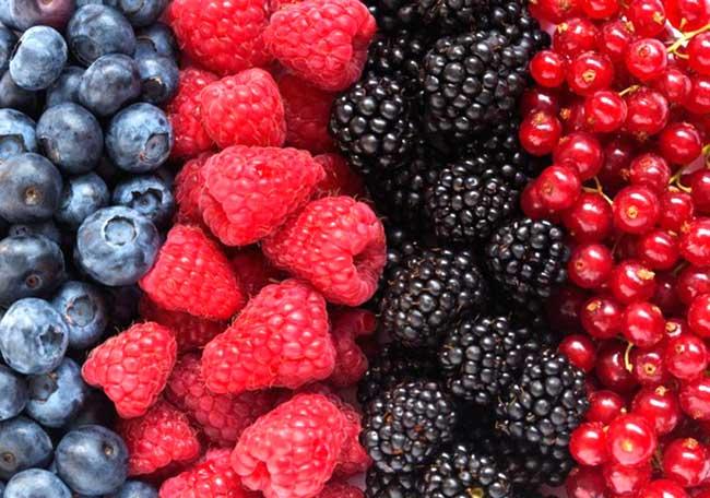 Природные антиоксиданты в продуктах питания