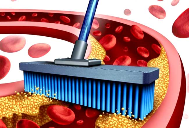 Препараты для очищения крови от токсинов и шлаков