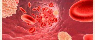 Аллергены в крови