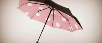Зонт женский от дождя