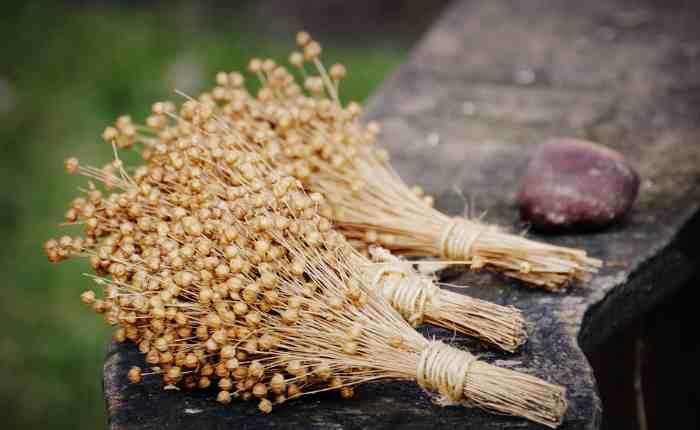 Рецепты из семян льна