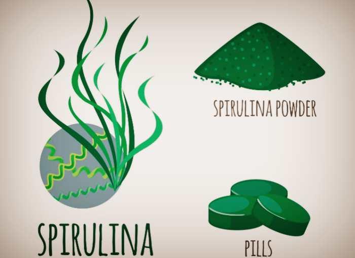 Форма выпуска водоросли спирулина