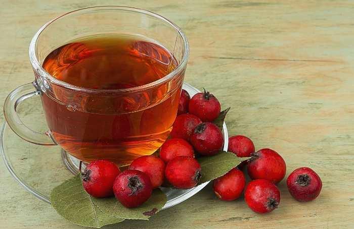 Чай из плодов боярышника