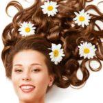 Ромашка для волос — рецепты от выпадения и восстановления