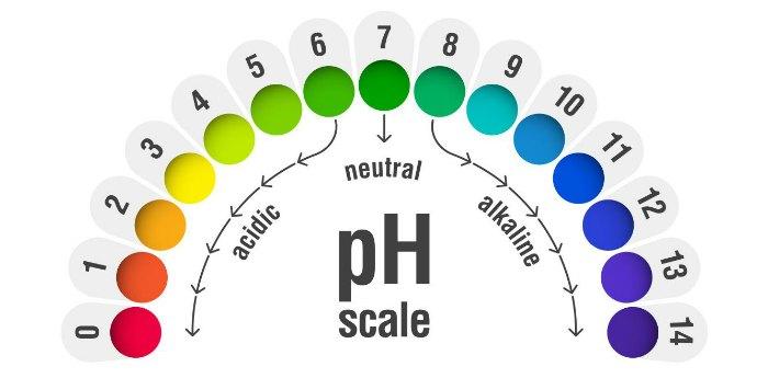 Уровень PH в организме
