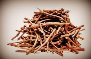 Заготовка и сушка корнивища сабельника