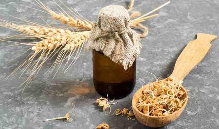 Польза масло зародышей пшеницы для волос