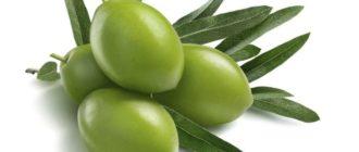 Польза оливок для организма человека