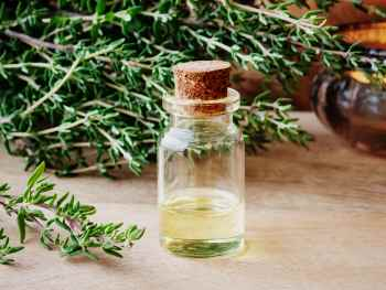 Применение эфирного масла чабреца