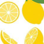 Польза и вред лимона для организма
