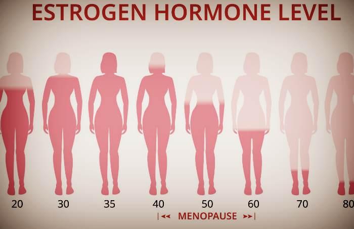 Гормон эстроген при менопаузе