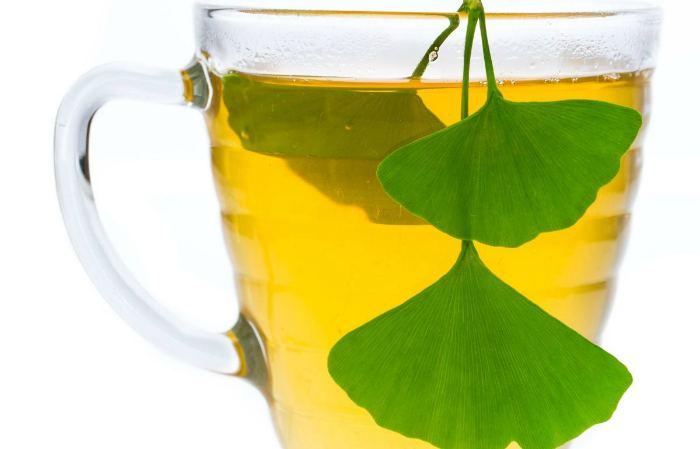 Чай из гинкго билоба от мигрени
