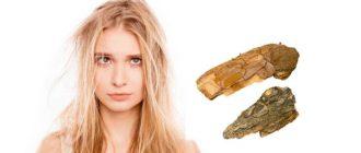 Кора дуба для восстановления волос