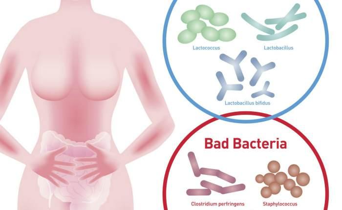 Причины стафилококка в мазке у женщин