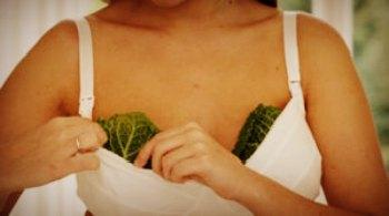 Как правильно прикладывать капустный лист при лактостазе