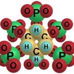 Фитиновая кислота в продуктах — польза или вред для организма