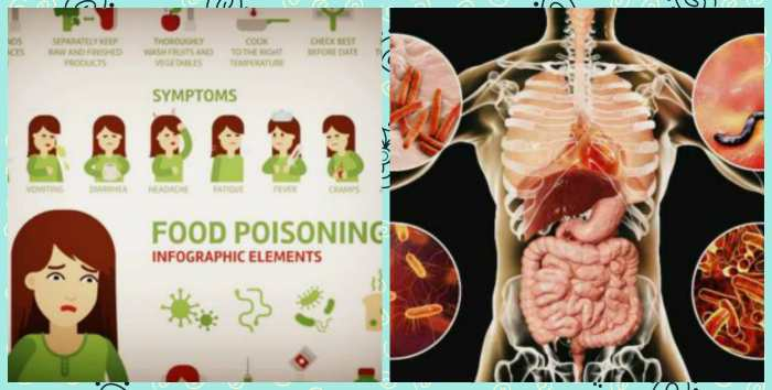 Симптомы и патогенная микрофлора при пищевом отравление