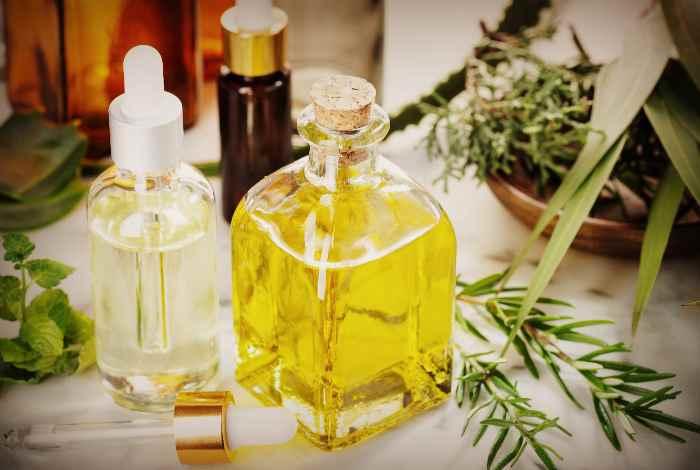 Пихта: полезные свойства и противопоказания, применение в народной медицине