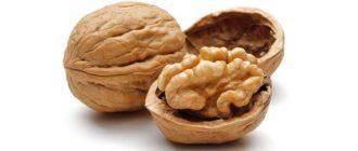Польза свежих грецких орехов