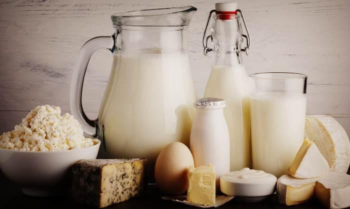 Продукты для пополнения кальция в организме