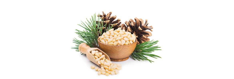 Польза от кедровых орехов для женщин
