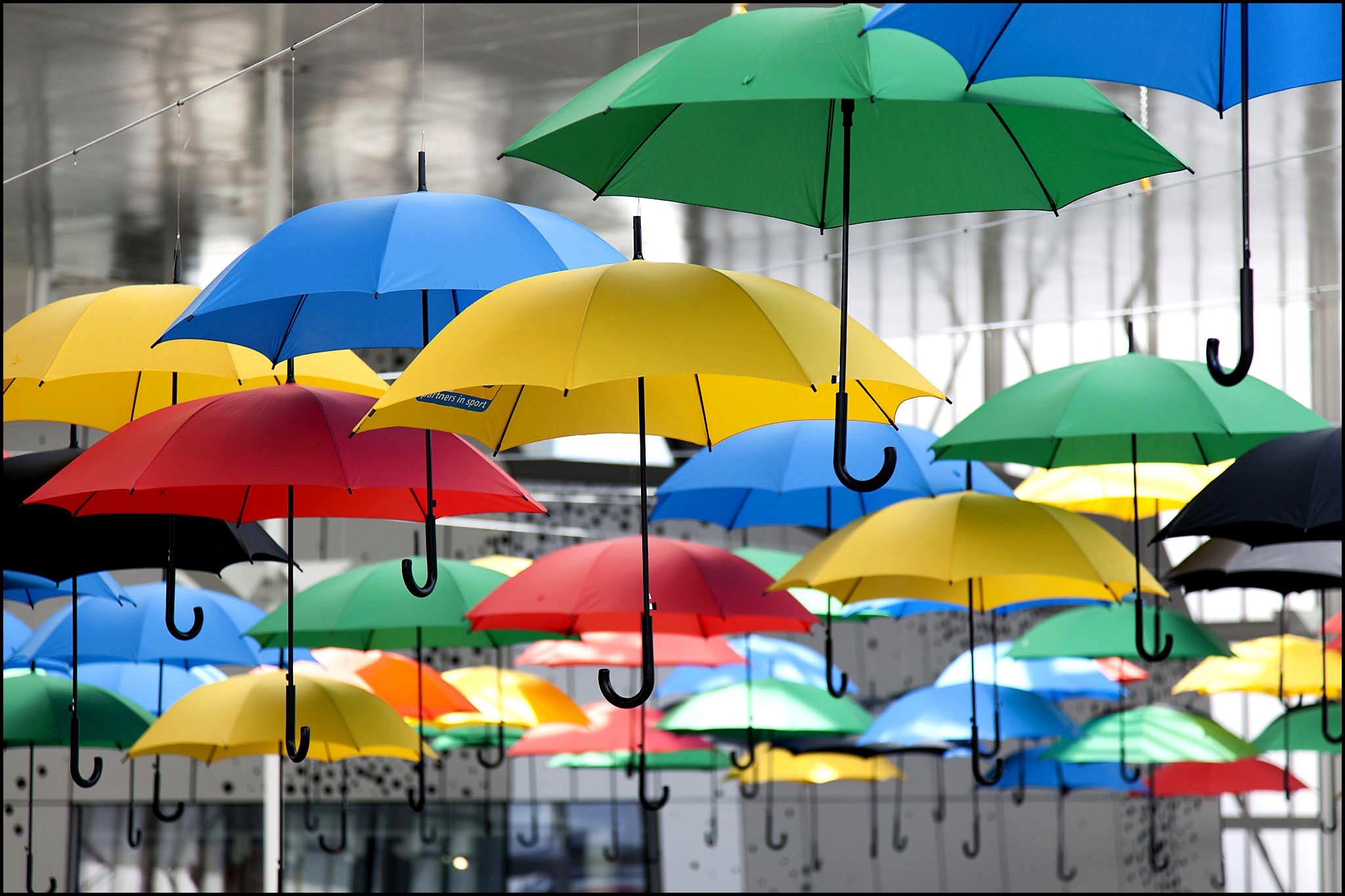 Много зонтов